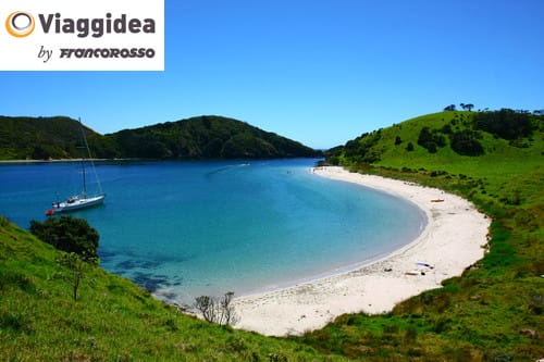 Bay of islands in New Zealand with a boat on the water